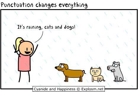 pausa_raining_cats_dogs
