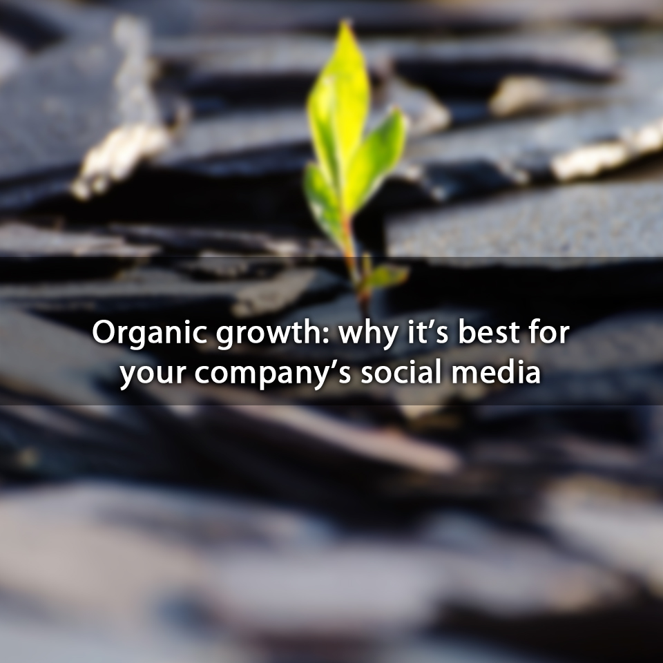 Organic growth: why it's best for your company's social media
