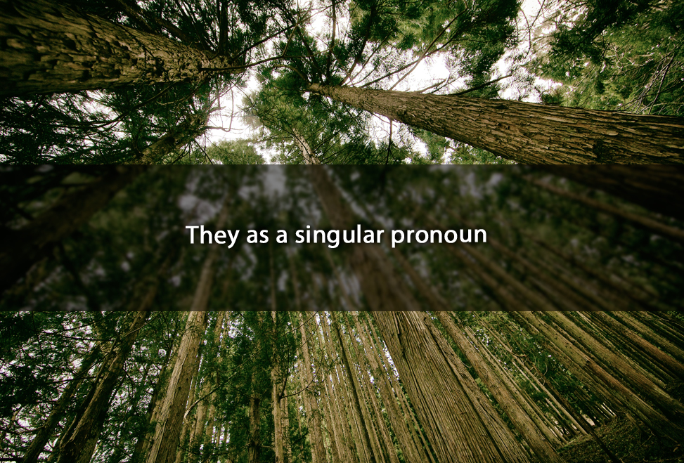 "It's okay to use ""they"" as a singular pronoun"