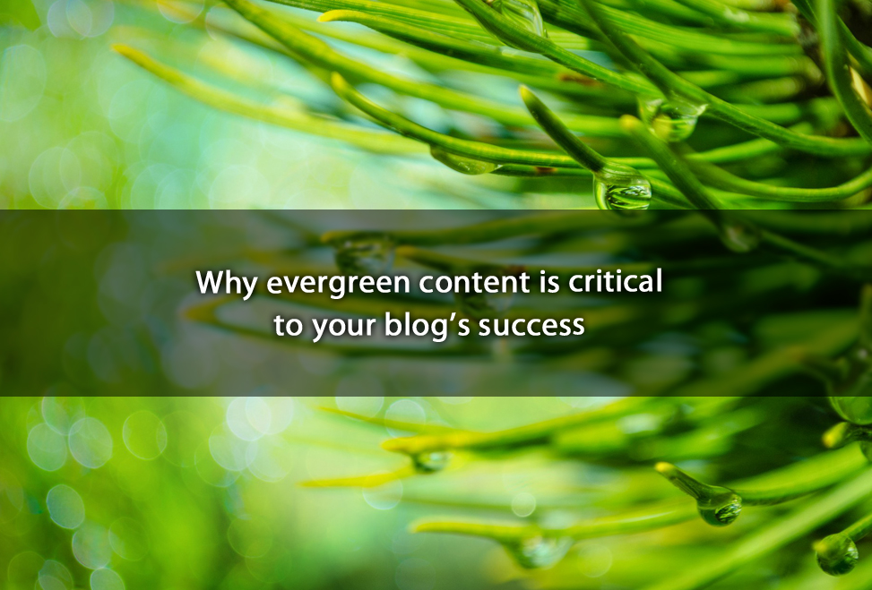 Why evergreen content is critical to your blog's success