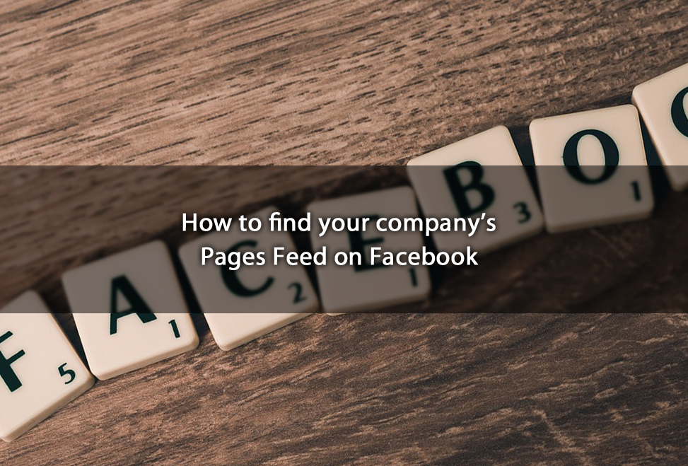 How to find your company's Pages Feed on Facebook